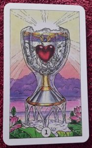 photo of the Ace of Cups from the Robin Wood tarot