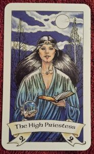 Photo of the High Priestess from the Robin Wood tarot