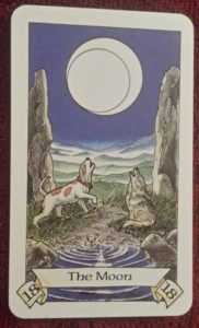 Photo of The Moon from the Robin Wood tarot